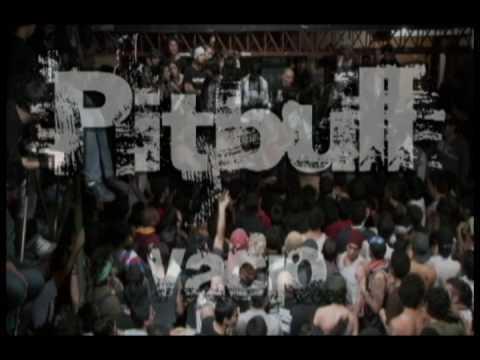 Pitbull - Vacio En Vivo